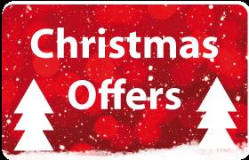 christmas website sale